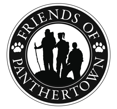 PanthertownLogo